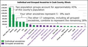 Figure 5. In the initial visualization design, displayed at the Hull House Museum, we needed to pare down the census's ancestry and race categories by grouping some smaller ancestries by region (from Roberts, Lyons, Radinsky, & Cafaro, 2012).